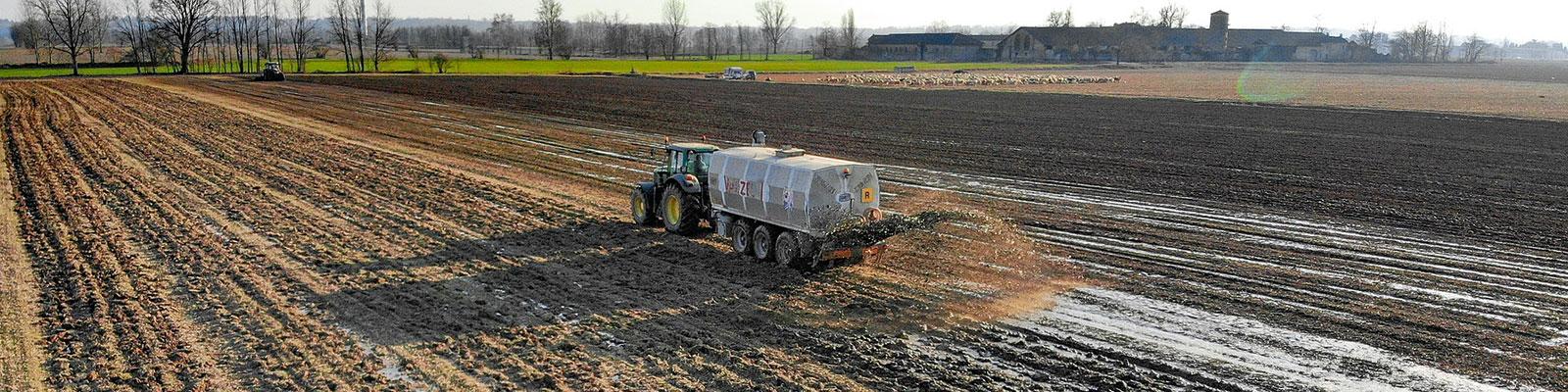 ปุ๋ย ธาตุอาหารพืช,fertilizer,micronutrients,จุลธาตุ,ธาตุอาหารรอง,ธาตุอาหารเสริม