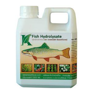 fish hydrolysate